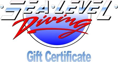 buy electronic gift card