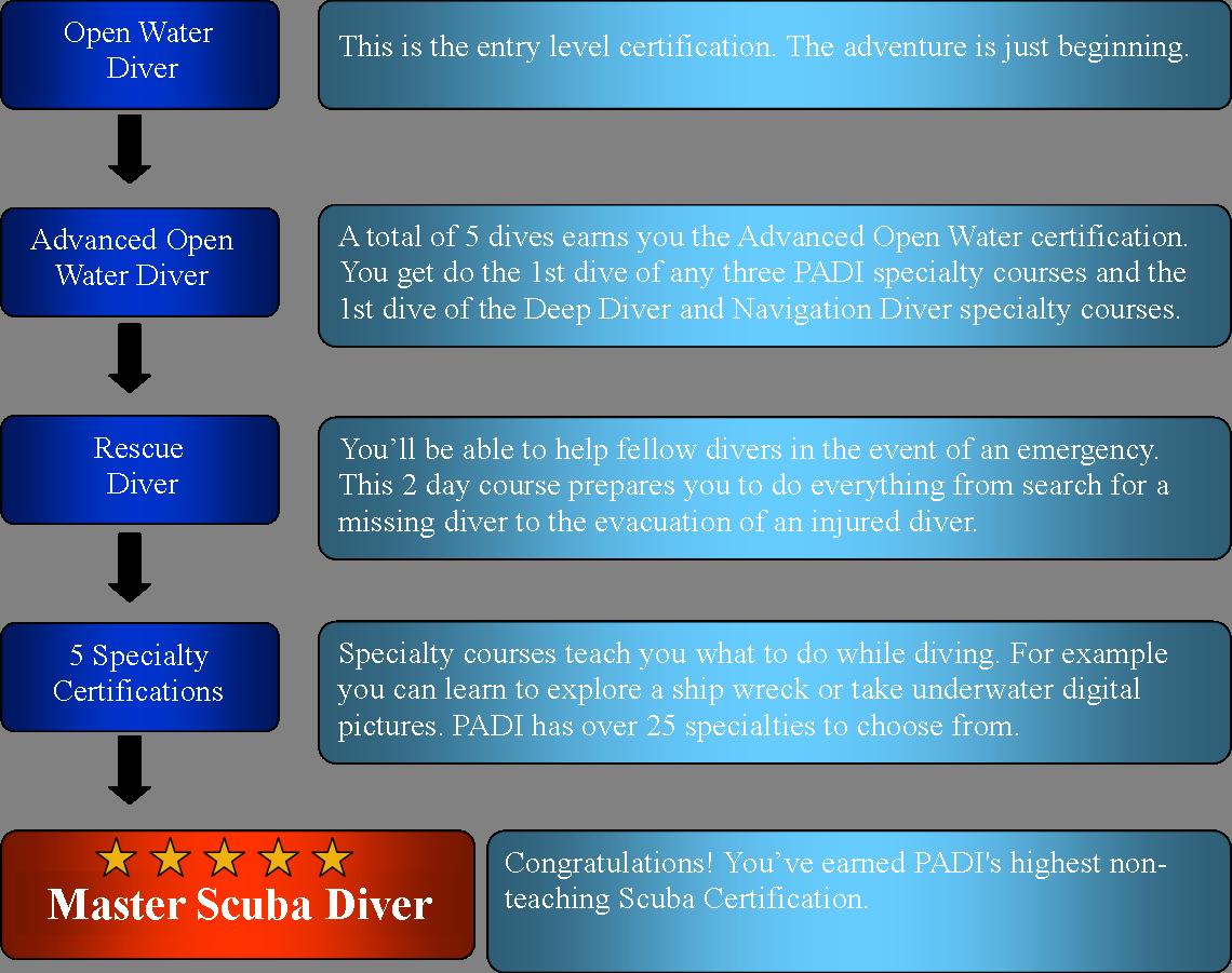 Master diver masterdvrchallenge masterdvrchallenge2 1betcityfo Images